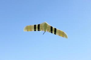 xenoflug-1